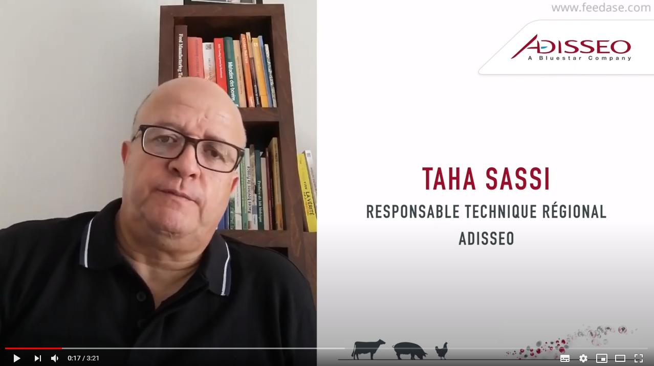 Taha Sassi responsableé technique régional Adisseo